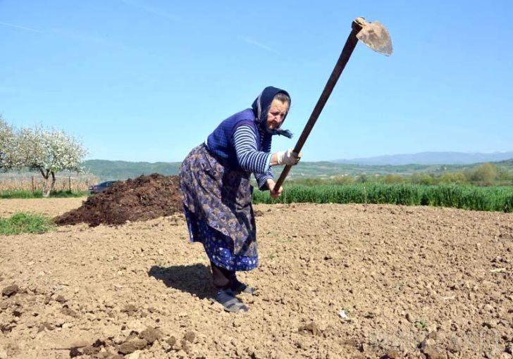 15 OCTOMBRIE ÎN ISTORIE – Ziua internaţională a femeilor din mediul rura
